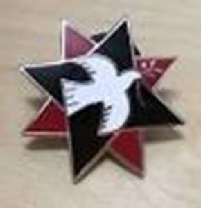 Picture of Quaker Star Enamel Badge