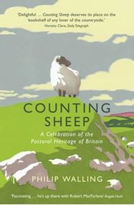 Picture of Counting Sheep