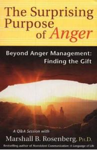 Picture of The Surprising Purpose of Anger