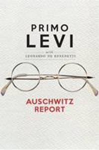 Picture of Auschwitz Report